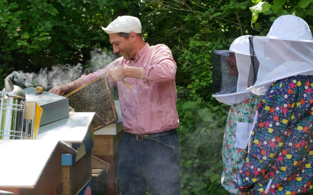 Les ruchers de Guillaume Schneider – mai 2021